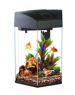 Frf 555bla hexagon tank black 21 6l fish tanks from den for Hexagon fish tank lid
